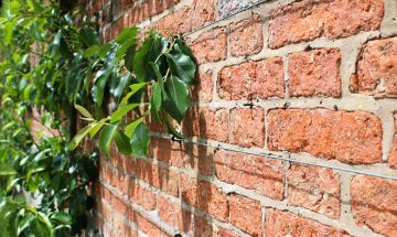 managing party wall agreements